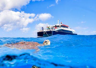 Great Barrier Reef Dreamtime Boat